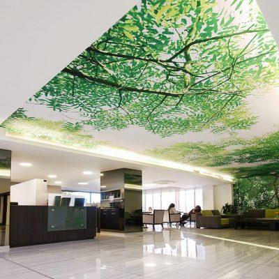 drevex-hotel alibaba-5